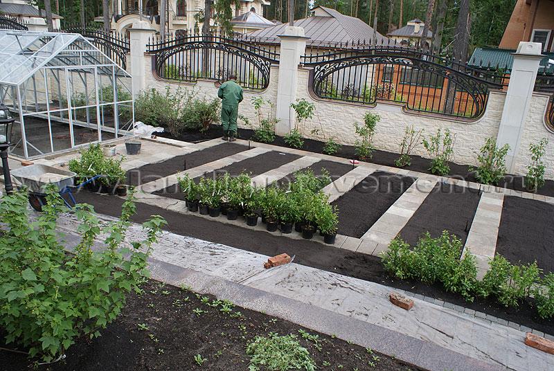 Дизайн участка с огородом и садом